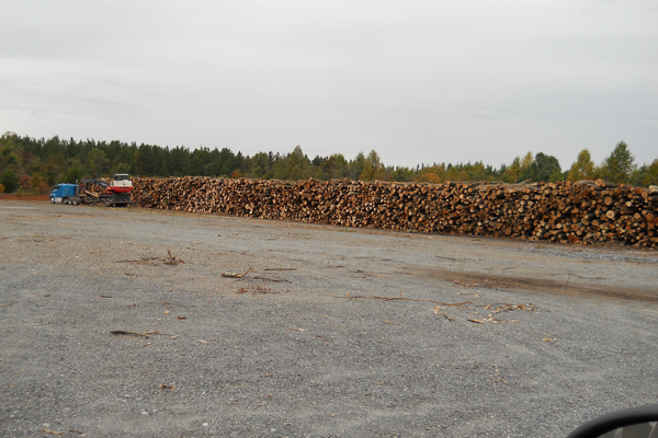 How To Sell Your Timber